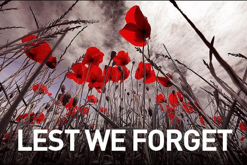 Lest we forget poppys